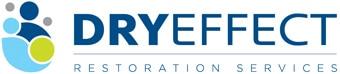 Dry Effect Logo