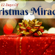12 Days of Christmas Miracles