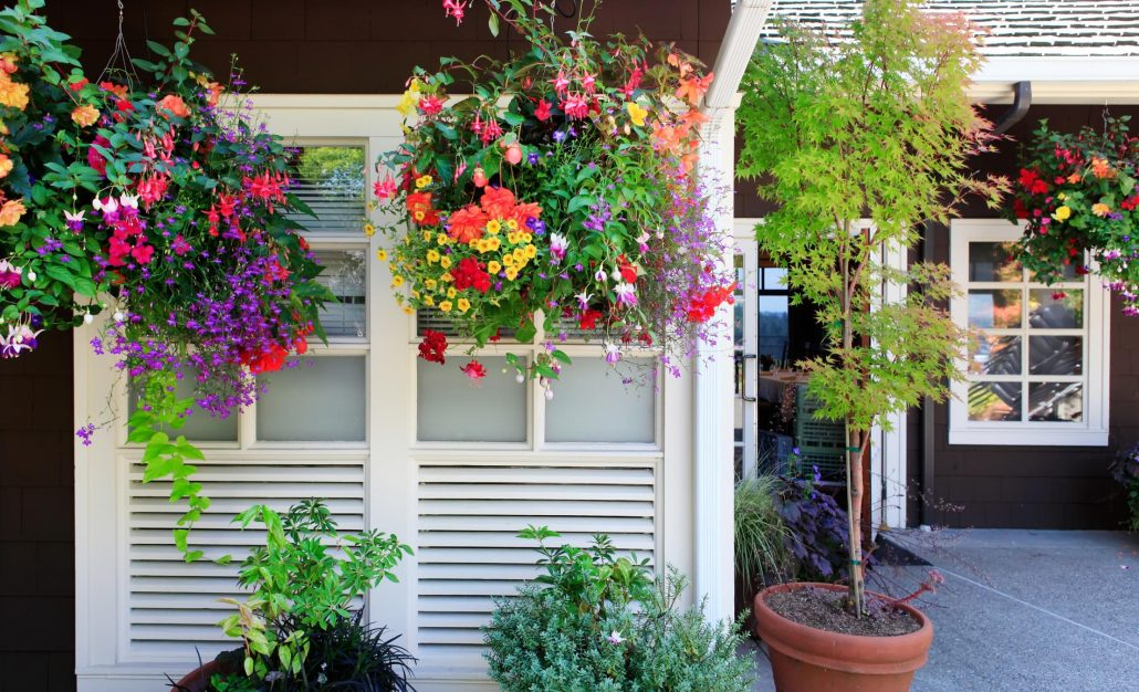 adding flowers outside of home to boost curb appeal
