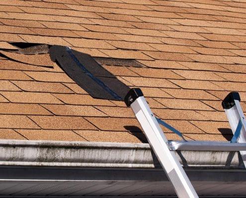 Roof Rapier