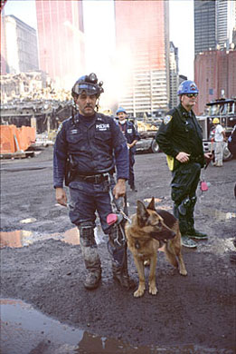 State_Department_Images_WTC_9-11_Officer_with_the_Canine_Rescue_Team